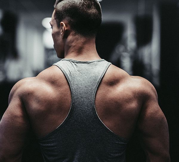 The five best back exercises