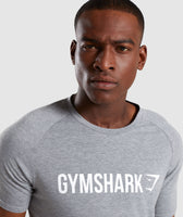 Gymshark Apollo T-Shirt - Grey 11