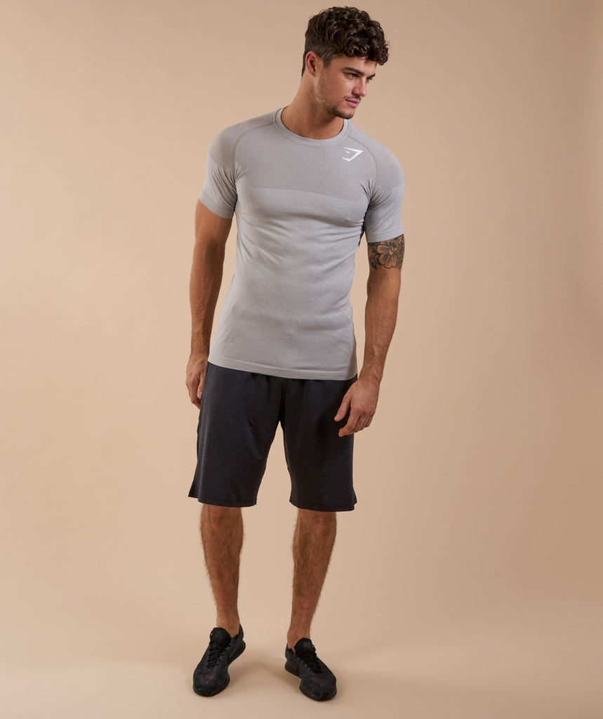 Gymshark Phantom Seamless T-Shirt - Grey 1