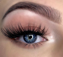 Load image into Gallery viewer, winged and fluffy full bodied false eyelashes by wispy winks