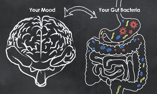 Can a healthy gut help manage your anxiety?
