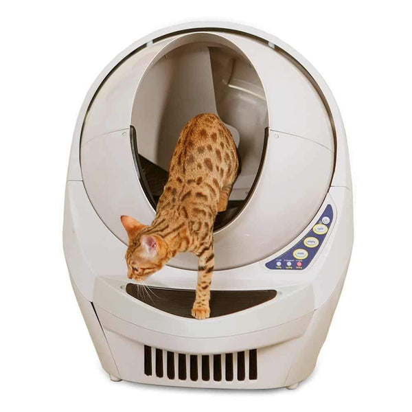 Should I get a litter robot?