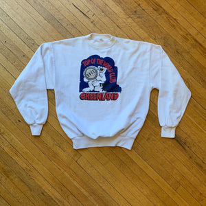 Reworked Greenland Top Of The World Polar Bear Crewneck