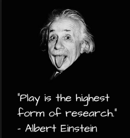 Learning through play - einstein quote