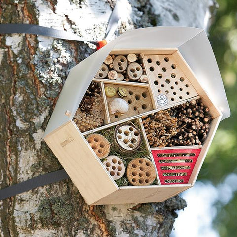 Outdoor eco insect hotel | Outdoor toys | Lucas loves cars