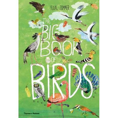 Big book of Birds  | Kids books  | Lucas loves cars