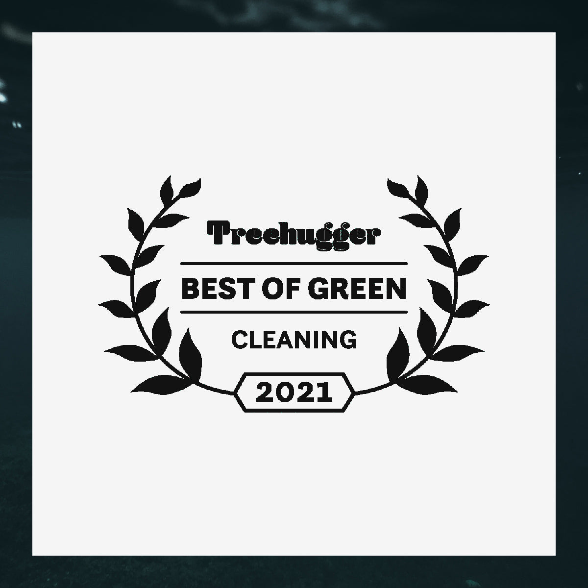 Sqwishful is a winner of the 2021 Treehugger Green Cleaning Awards