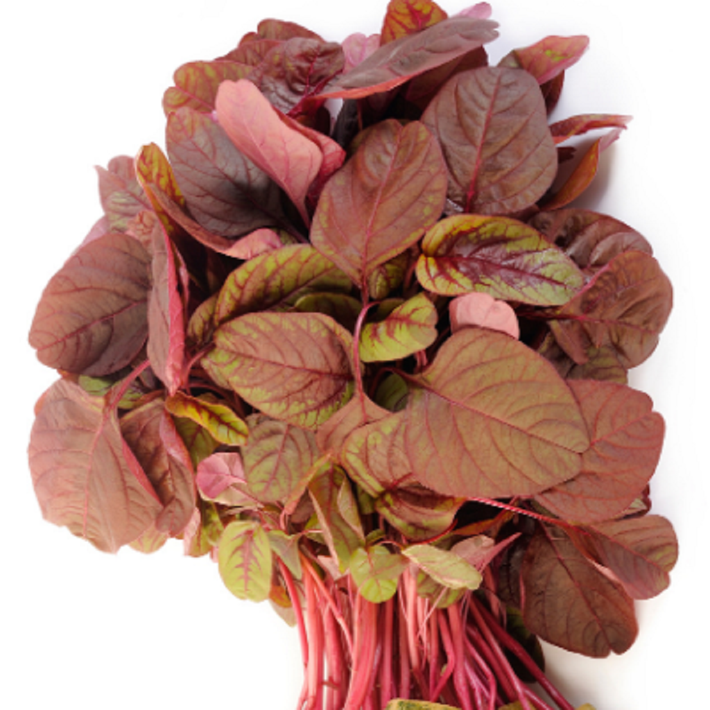 Amaranthus Red Seeds
