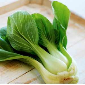 buy pakchoi seeds buy bok choy seeds online