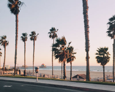California dreaming…