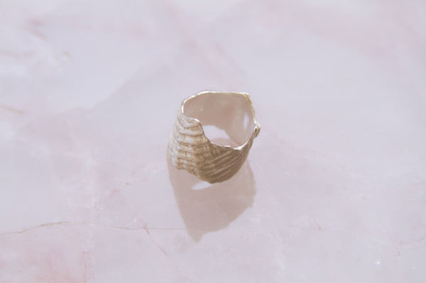 Shell Ring-09