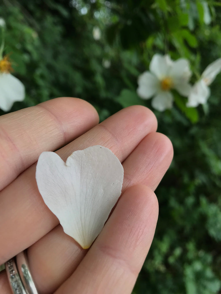 heart shaped petal