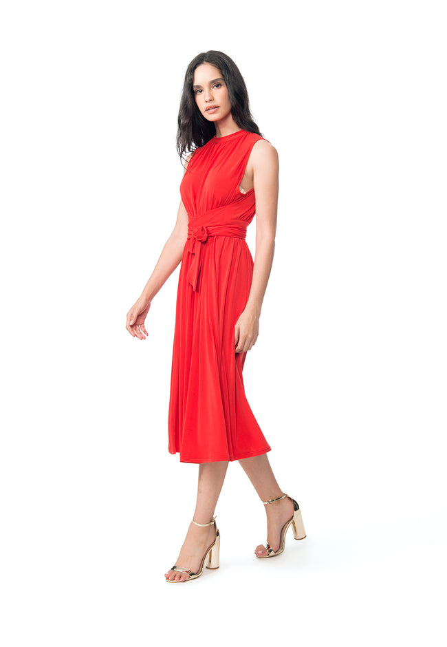 Mindy Shirred Dress in Goji Berry