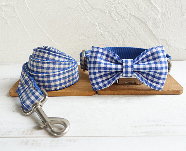 Blue & White Checkered Collar