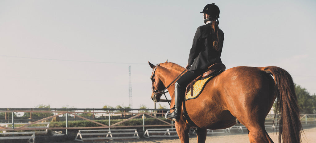 The pelvic floor: How to protect it while practicing horseback riding