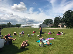 Yoga with the Goats! August 26th -- 9am