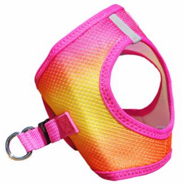 Ombré Color Harness