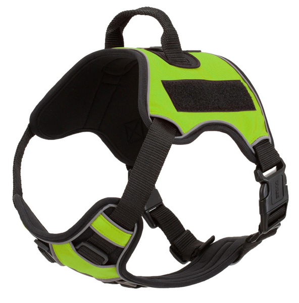 Quest Multi-Purpose Harness