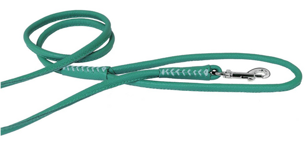 Rolled Leather Leash