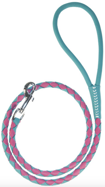 Braided Leather Leash