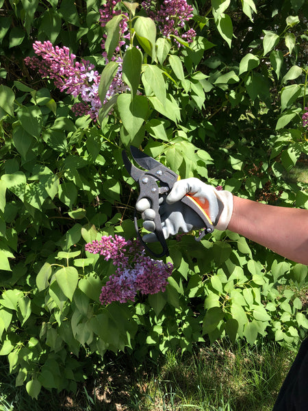 The power ratchet pruner allows you to ratchet cut or power through with one cut ! The power ratchet also has a knuckle gaurd to protect your hands !