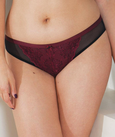 Curvy Kate Dragonfly Brazilian Brief - Black/Wine - Front
