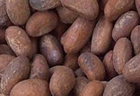 Bitter Kola Nuts by Opparel