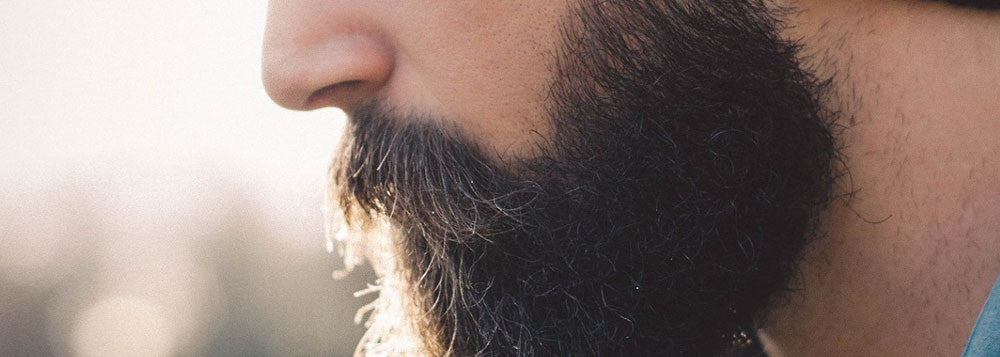 A beard growers guide for beginners