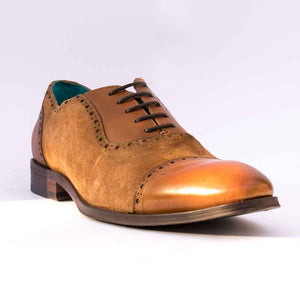 Paulo Vandini THESUS Mens Tan Oxford Toe Cap Shoe