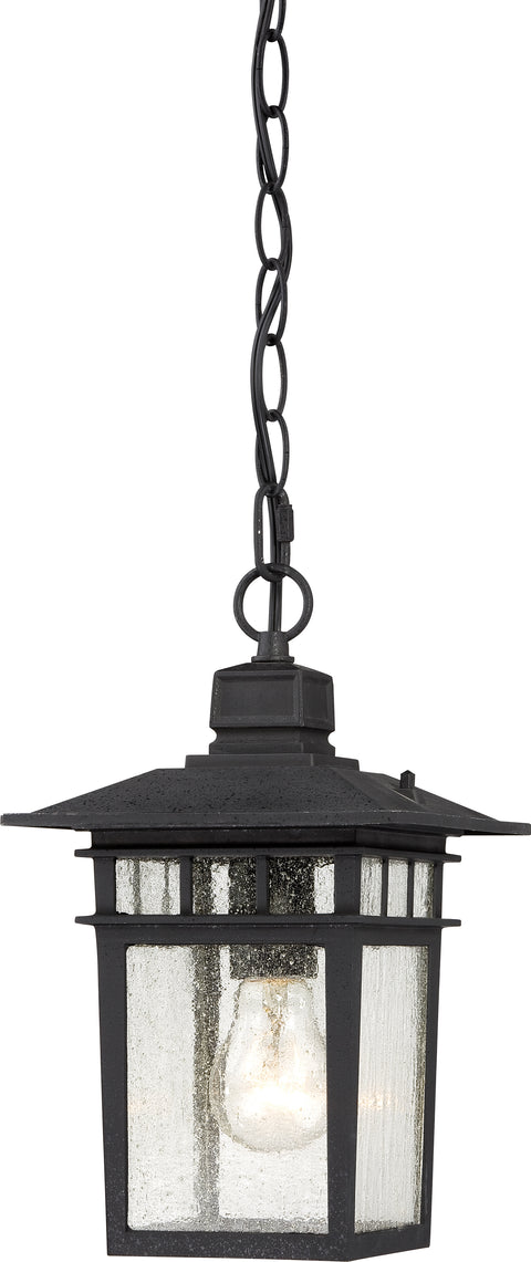 Nuvo Lighting 60/4956 Cove Neck 1 Light 12 Inch Outdoor Hang with Clear Seed Glass