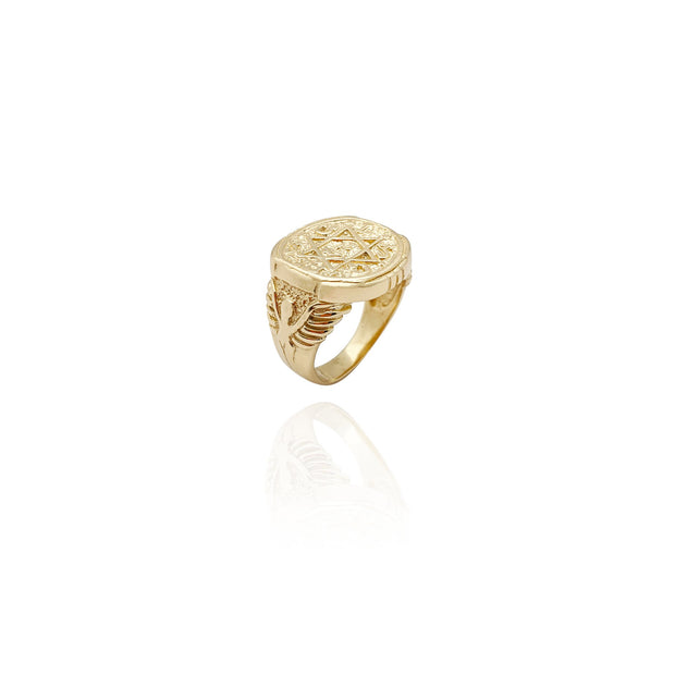 Star of David Ring (14K) New York Lucky Diamond