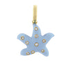 Starfish with Scattered Diamonds