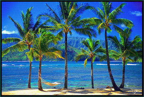 Hawaii Hammock Photograph