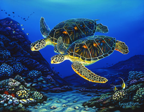 Honu Partners Art Print