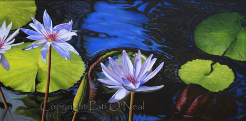 Lavender Water Lilies