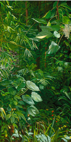 Manoa Jungle II - Ferns