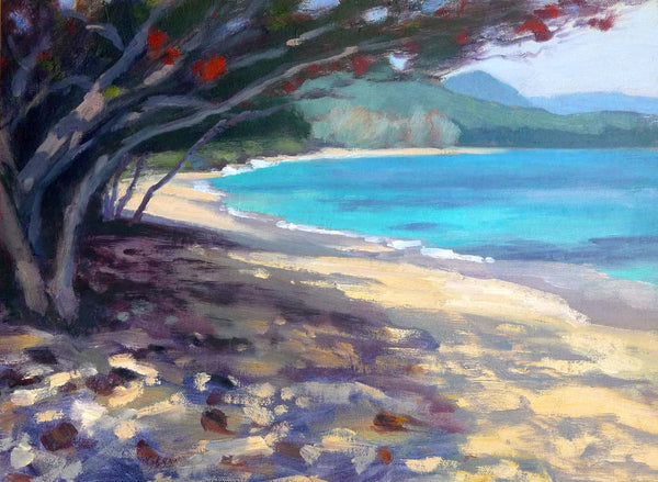Shady Beach Tree