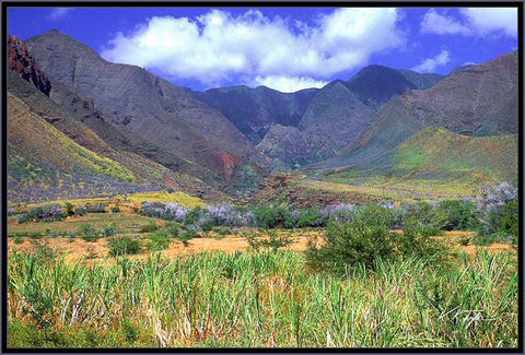 West Maui Mountains Photograph