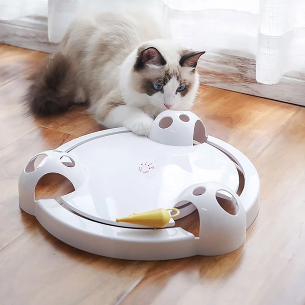 Adjustable Speed Pounce Cat Toy