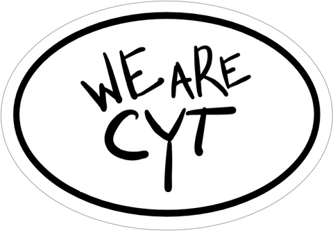 We Are CYT Stickers