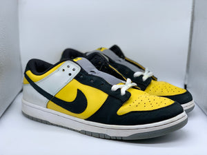 BIC Dunk Low size 13