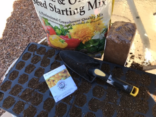 seed starting tools
