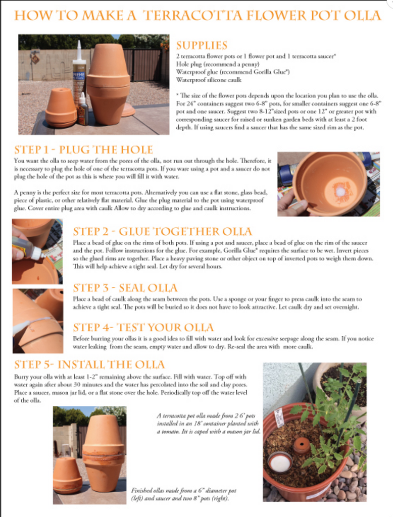 How to Use Olla Irrigation – Native-Seeds-Search
