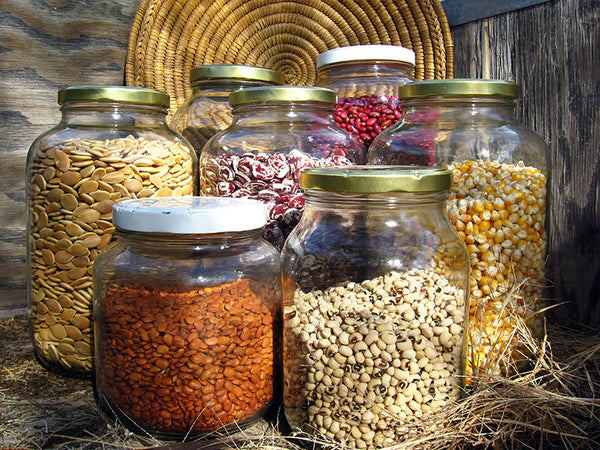 Seed Bank Native Seeds Search