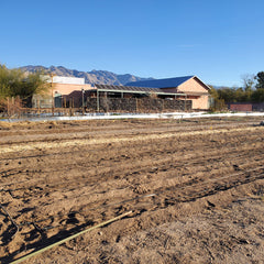 native seeds search conservation center garden expansion