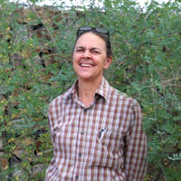liz fairchild native seeds search