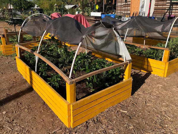 shade cloth helps protect plants from harsh desert sun