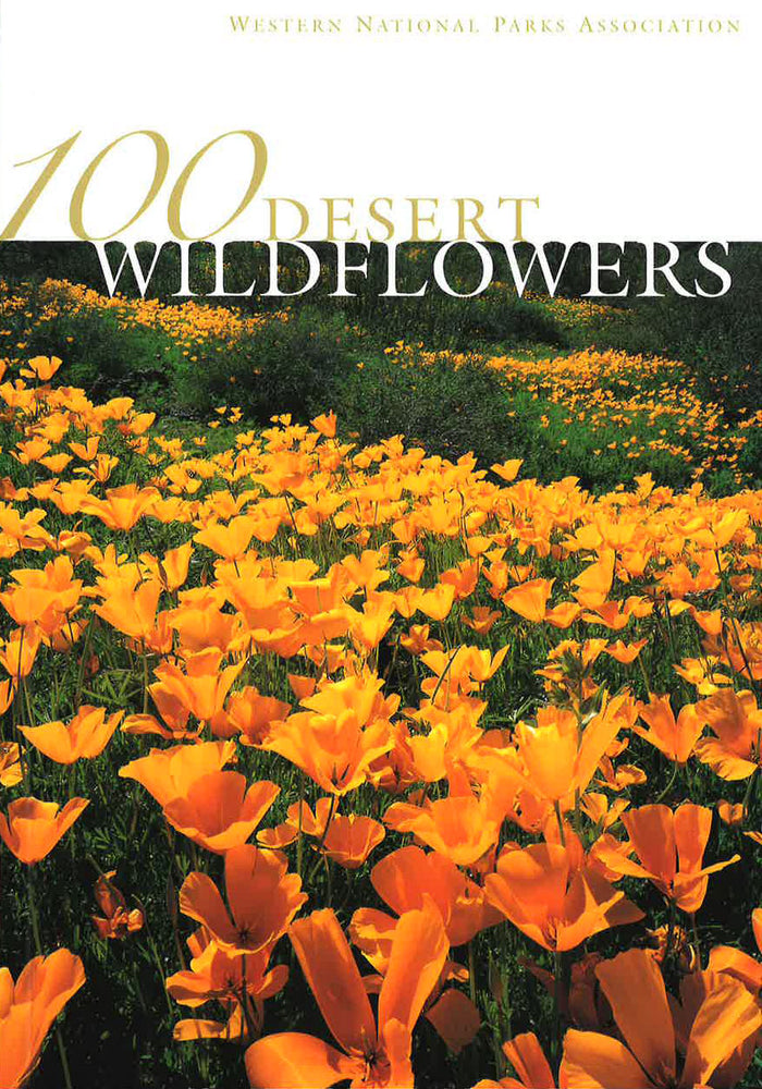 100 Desert Wildflowers