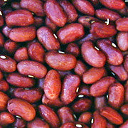 Taos Red Bean