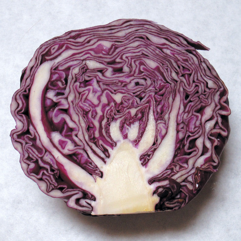 red acre cabbage high in vitamin c